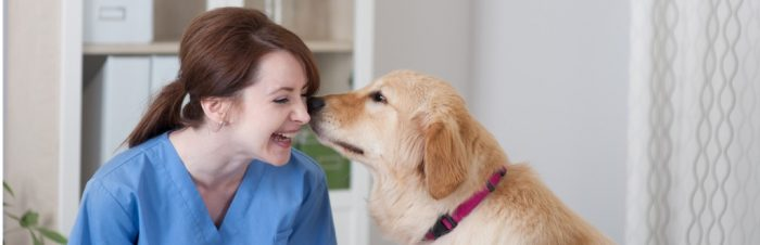 Veterinary Assistant Course